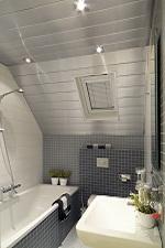 Badkamer plafond van Luxalon - Online bestellen  afbouwmateriaal.com