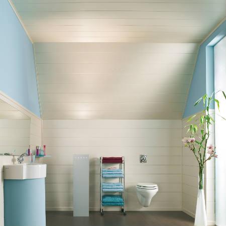 welk plafond in badkamer � devolonterinfo