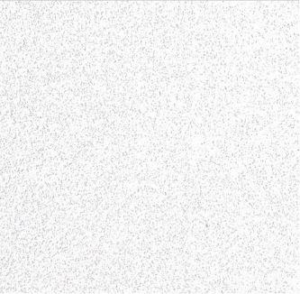 Systeemplafond Antaris 600x600 mm inleg
